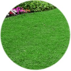 LANDSCAPING LAWN CARE SNOW REMOVAL NORTHFIELD MINNESOTA